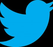 twitter-logo-noir